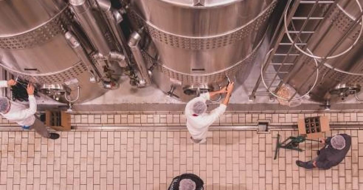 Avaliação Nacional de Vinhos - Safra 2020 - Coleta de amostras começa hoje