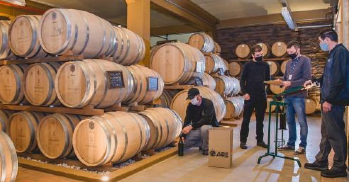 Avaliação Nacional de Vinhos segue critérios rigorosos sendo aplicado com padronização em todo o país